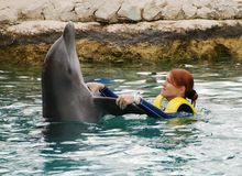 Baile con los delfínes Foto de archivo