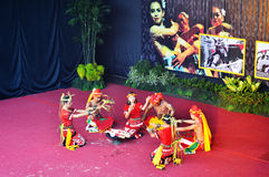 Baile de Kalimantan Imagen de archivo libre de regalías