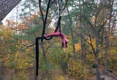 Baile de la mujer con la seda aérea en un fondo de los árboles Imagen de archivo