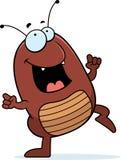 Baile de la pulga Foto de archivo libre de regalías