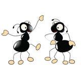 Baile de las hormigas Foto de archivo libre de regalías