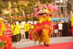 Baile del león en Año Nuevo chino. Imagen de archivo libre de regalías