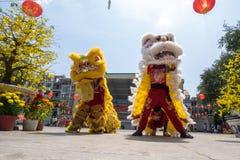Baile del león para celebrar Año Nuevo lunar Fotos de archivo