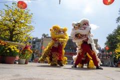 Baile del león para celebrar Año Nuevo lunar Foto de archivo libre de regalías