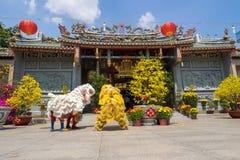 Baile del león para celebrar Año Nuevo lunar Imágenes de archivo libres de regalías