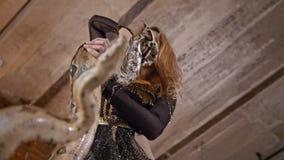 Baile femenino de la actriz del circo con una serpiente en un estudio almacen de metraje de vídeo