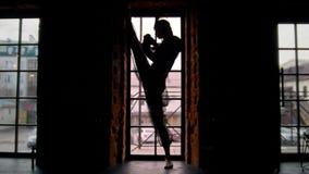 Baile femenino de la silueta de la actriz del circo con una serpiente delante de la ventana almacen de metraje de vídeo