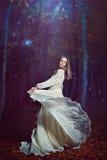Baile hermoso de la mujer con las hadas del bosque Fotografía de archivo libre de regalías
