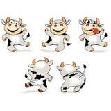 Baile loco de la vaca de la historieta divertida en diversas actitudes Imagen de archivo