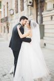 Baile romántico de los pares y el besarse en su boda imagen de archivo