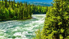 Bailey`s Chute, a narrow section in the Clearwater River, in Wells Gray Provincial Park. View of the rapids in Bailey`s Chute, a narrow section in the swollen Stock Image