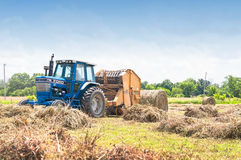 Bailing grass hay Stock Image