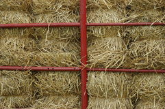 Bales of Hay. Several stacks of bales of hay Royalty Free Stock Photography
