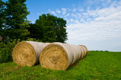 Bails of Hay Royalty Free Stock Photo