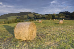 Bails of Hay. And beautiful green landscape stock photos