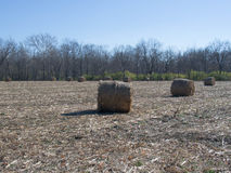 Bails of Hay. In a field in Delaware County, Ohio stock image