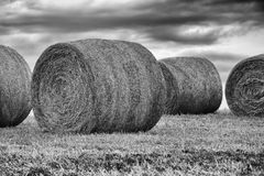 Bails of hay Royalty Free Stock Photos