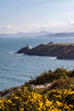 Baily Lighthouse at Howth Head. Landscape with vegetation, sea and the Baily Lighthouse in Howth Stock Images