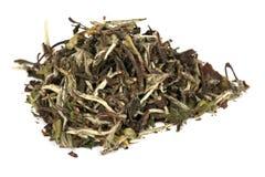 Baimudan (bai mu dan) - de thee van het elite Zinkwit stock afbeelding