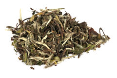 Baimudan (bai mu dan) - elite Chinese white tea Stock Image