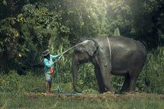 Bain d'éléphant extérieur Image stock