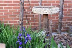 Bain d'oiseau dans un arrangement de jardin Photographie stock libre de droits