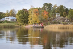Bain de canards dans un étang Photo stock
