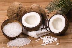Bain de Cocos et de vanille photographie stock libre de droits