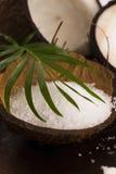 Bain de Cocos noix de coco avec du sel de mer photo stock