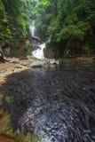 Bain de poissons à la cascade à écriture ligne par ligne Images stock