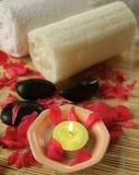 Bain floral avec le peta rose de rouge Photos libres de droits