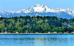Bainbridge ö Puget Sound snöig Mt Olympus Washington Royaltyfri Foto