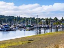 Marina  on Bainbridge island part of the city of Seattle USA