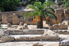 Bains thermiques d'Antonin à Carthage Image libre de droits