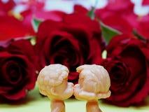 baiser Photographie stock libre de droits