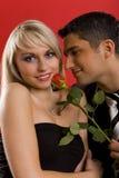 Baiser d'une rose Photographie stock libre de droits