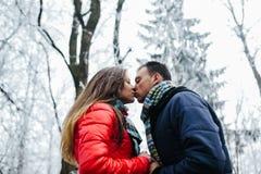 Baiser dans la forêt d'hiver Images libres de droits