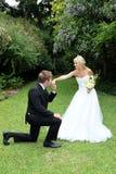 Baiser de couples de mariage photo libre de droits