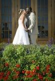 Baiser de couples de mariage de chemin mélangé Images stock