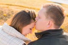 Baiser doux Jeune homme beau embrassant son amie sur le front en parc d'automne Image stock