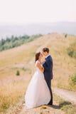 Baiser romantique des nouveaux mariés sur la traînée à travers le champ ensoleillé jaune avec la colline de forêt comme fond Image stock