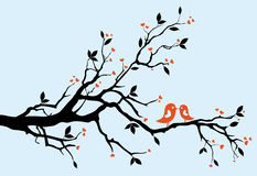 Baisers d'oiseaux Image libre de droits