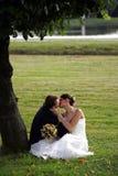 Baisers de couples de nouveaux mariés Photographie stock libre de droits