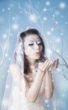 Baisers de soufflement de reine de l'hiver Photos stock