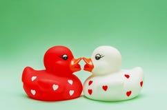 Baisers des canards Photographie stock libre de droits