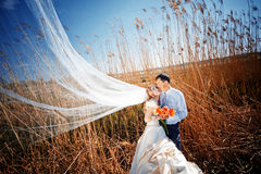 Baisers des couples de mariage Photo stock