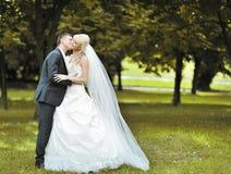 Baisers des couples de mariage en stationnement Image libre de droits