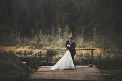 Baisers des couples de mariage restant au-dessus du beau paysage Image stock