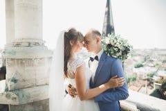 Baisers des couples de mariage restant au-dessus du beau paysage Photographie stock