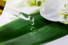 Baisse d'huile essentielle tombant sur la feuille verte du compte-gouttes en verre photo stock
